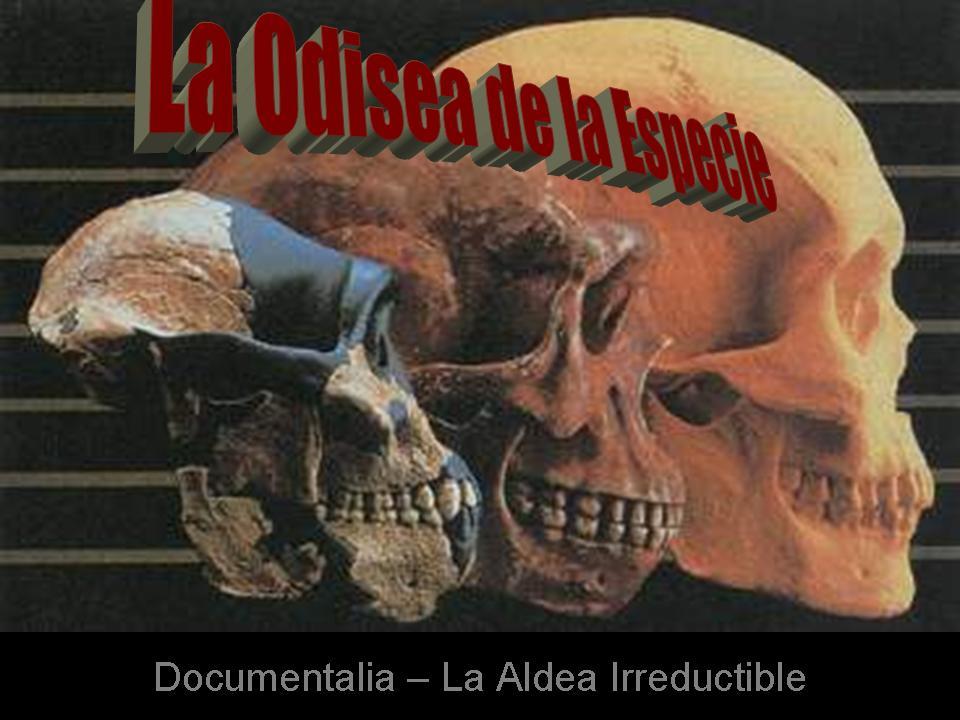 DOCUMENTALIA � LA ODISEA DE LA ESPECIE   ciencia   La Aldea ...