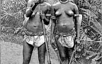 Dahomey-amazoner