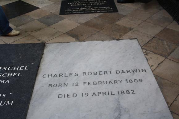 Homínido enterrado bajo una catedral