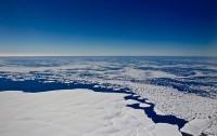 Calentamiento global y sus inesperados efectos en ecosistemas frágiles