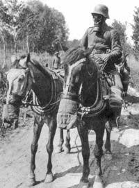 Curiosidades De La Primera Guerra Mundial La Aldea Irreductible