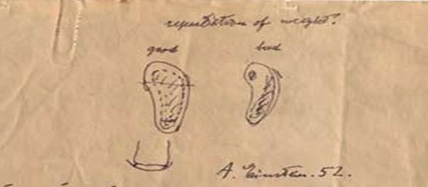 Bocetos 1952