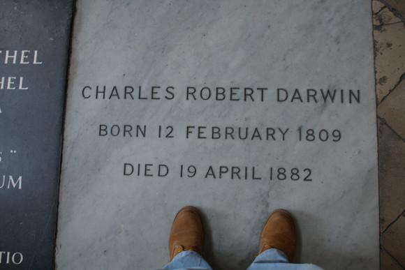 Tumba de Charles Darwin