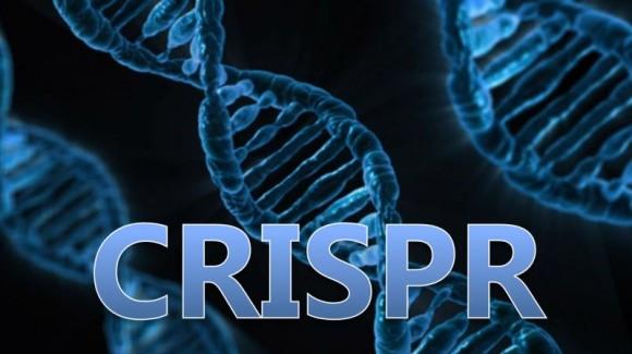 CRISPR/Cas en España