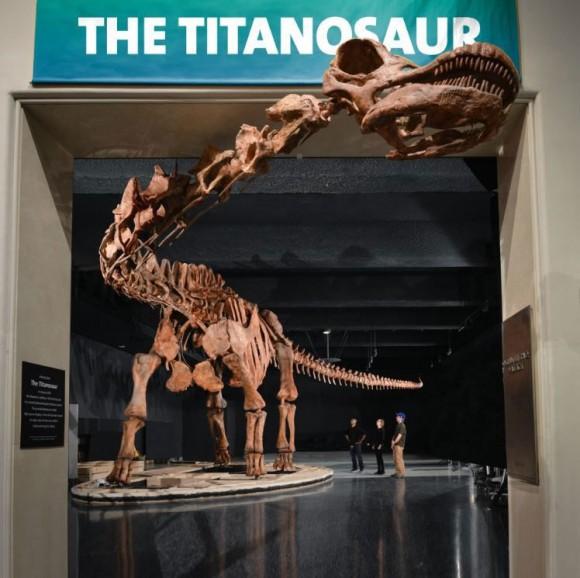 El Titanosaurio expuesto en el AMNH