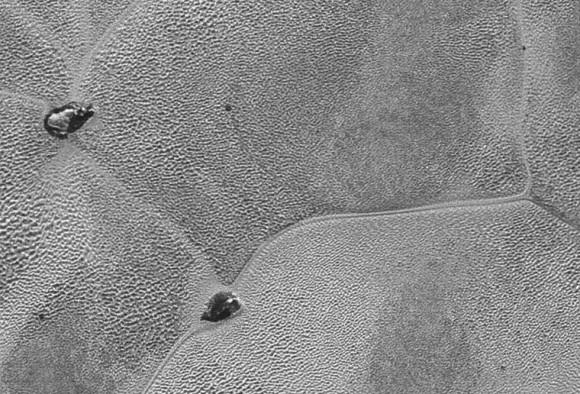 Icebergs flotando en la superficie de Plutón