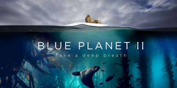 [Trailer] Llega Blue Planet 2